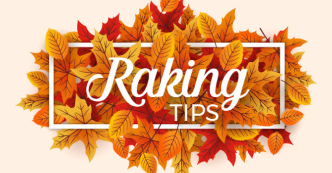 5 Tips for Safe Leaf Raking this Fall image